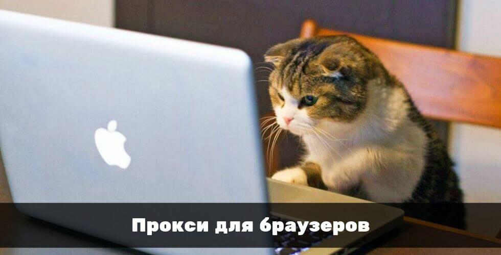 Прокси для браузеров: Яндекс, Google Chrome и прочих
