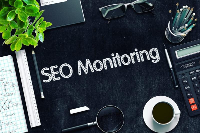 Важность SEO мониторинга